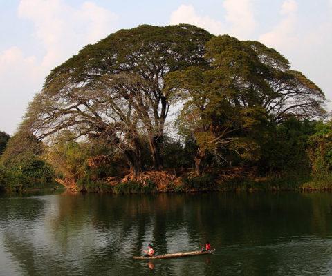 Hôtel Laos 4000 Îles